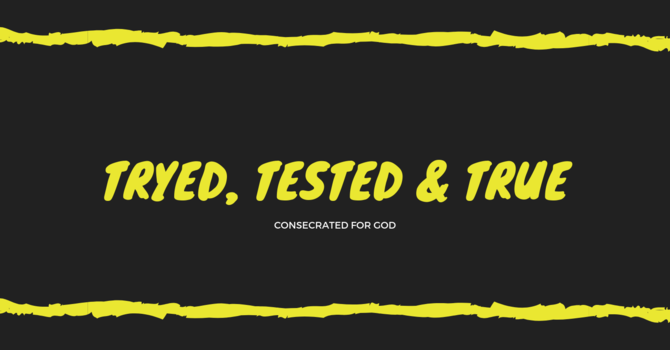 Tried, Tested, & True 2