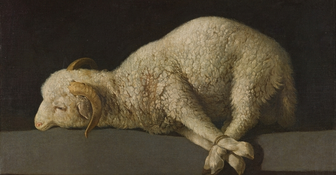 The Lamb Who Was Slain