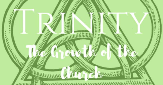 Shame, Shame, Go Away--17th Sunday after Trinity