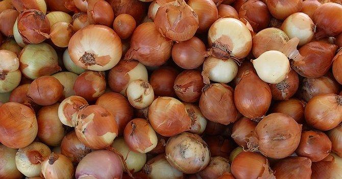 We got Onions! image
