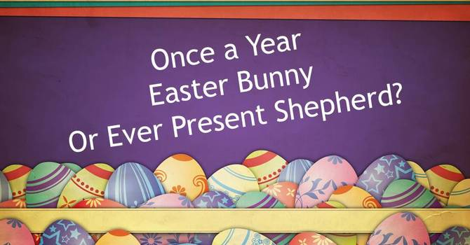 Once a year Easter Bunny or Ever Present Shepherd? image