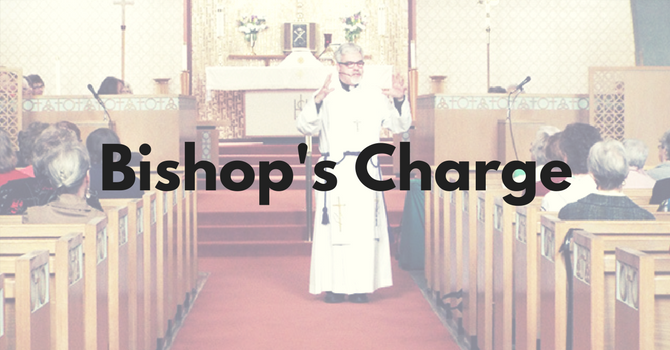 Bishop's Charge to 2015 Synod image