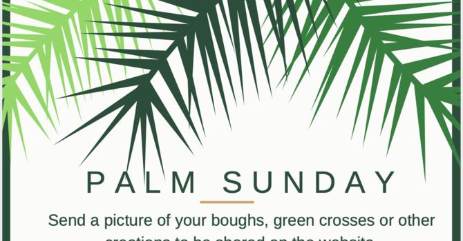 Palm Sunday Photos image