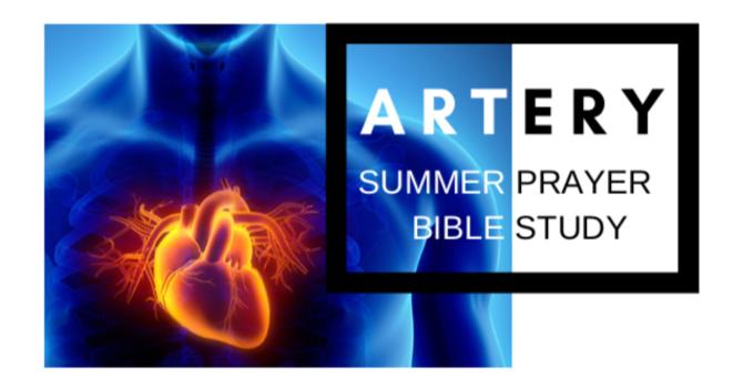 Artery Summer Study image
