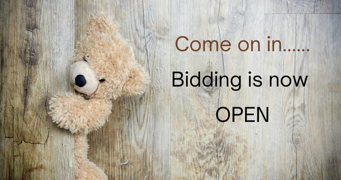 Virtual Hugs Community Auction
