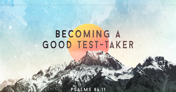 Becoming a Good Test-Taker