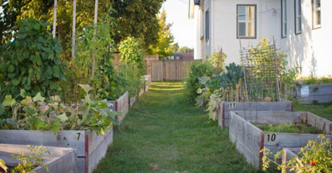 Garden of Eatin'  ~ Garden Plots Are Still Available ~ image