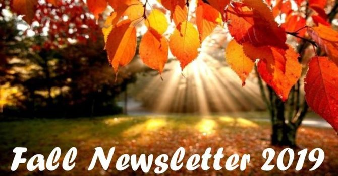 Fall Newsletter image