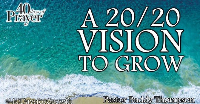 A 20/20 Vision to Grow