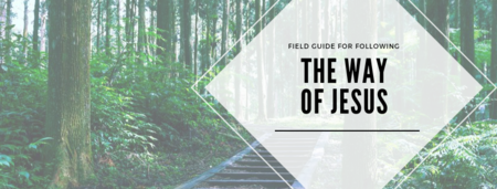 A Field Guide for Following the Way