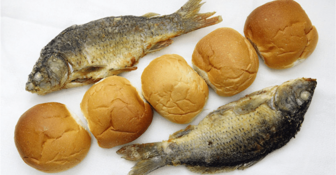 Story ~ Loaves and Fishes image
