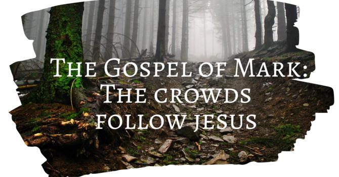 The Crowds Follow Jesus