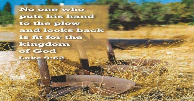 Worship Service Bulletin - Third Sunday After Pentecost image