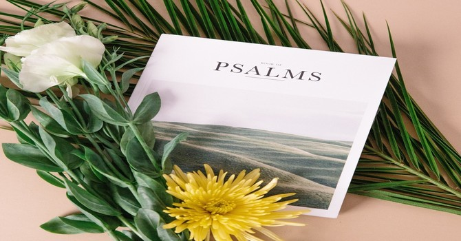 What does the Word mean to the Psalmist of 119?