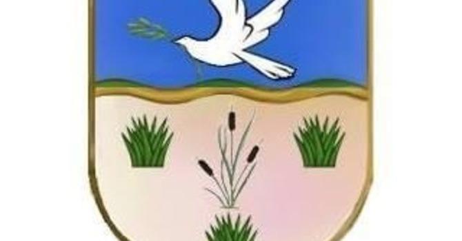 Diocesan Synod 2020 image