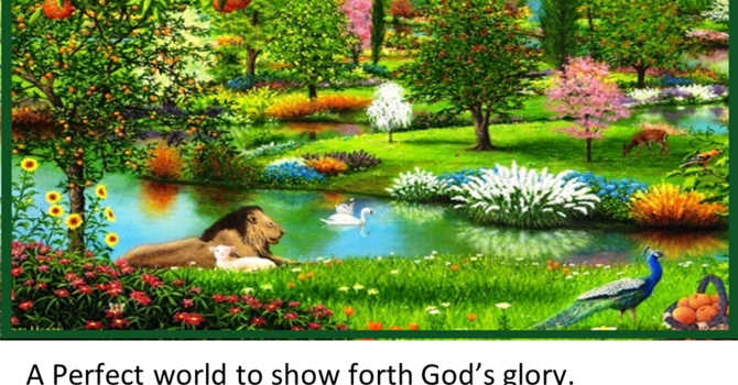 God's Perfect World - Children's Story image