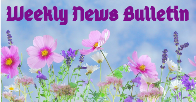 Sunday, June 14th News Bulletin image