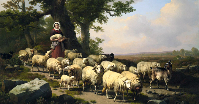 Separating the Sheep from the Goats