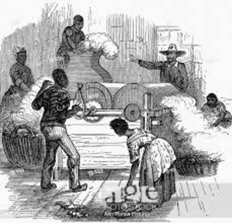 """""""Slave Labour"""""""