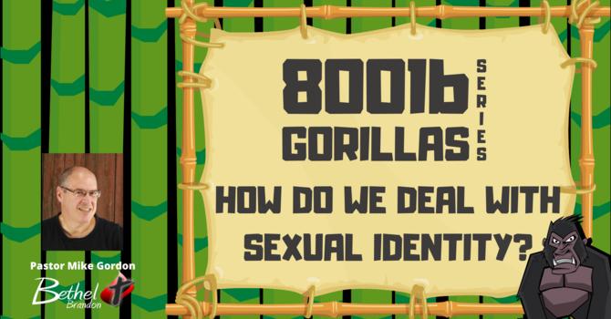 800 lb Gorilla Pt. 7