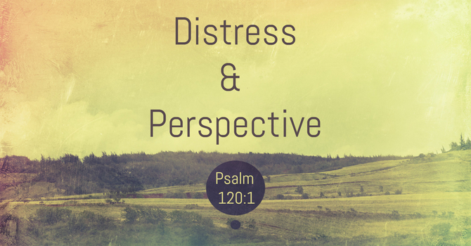Distress & Perspective image