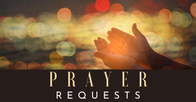 New Prayer Chain Email Address image