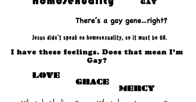 Homosexuality & Same Sex Attraction  image