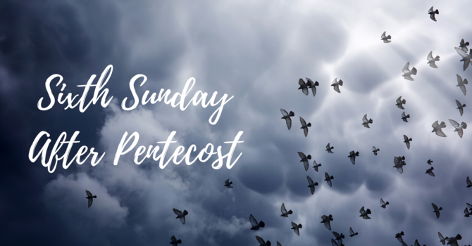 Sixth Sunday After Pentecost