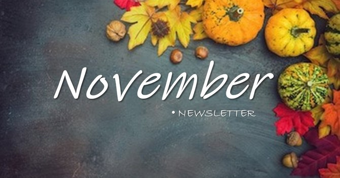November 2020 Monthly Newsletter image