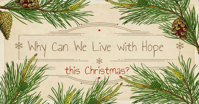 Why Can We Live in Hope this Christmas? image