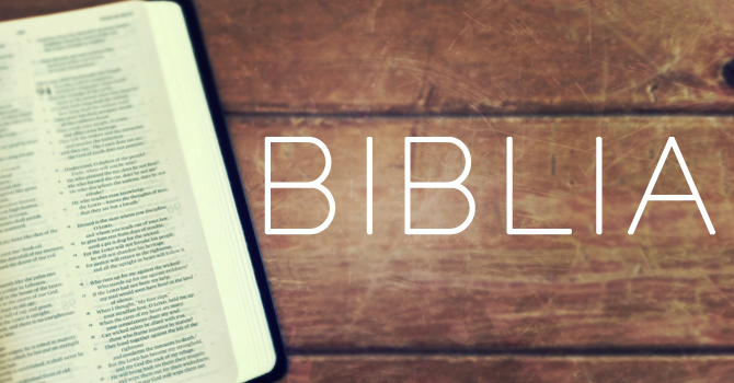 Biblia Teaching Series image