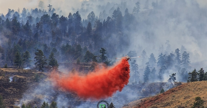 PWRDF BC Wildfire Update and How You Can Help image