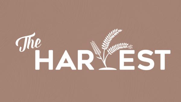 The Harvest | 2020