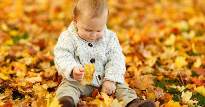 Healthy Families November 2016 Calendar  image