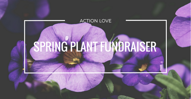 Action Love Spring Plant Fundraiser image