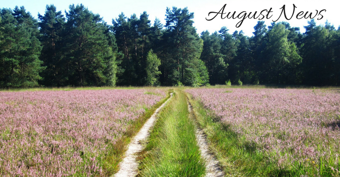 August News - What's Happening this Month? image