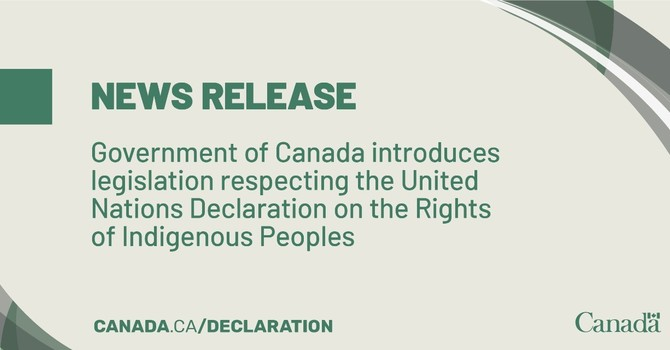 Introduction of Bill C-15 image