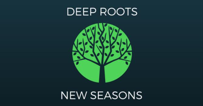 Deep Roots New Seasons image