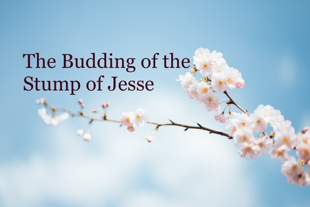 The Budding of the Stump of Jesse