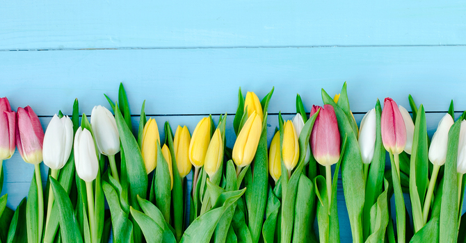 Easter Altar Flower Orders image
