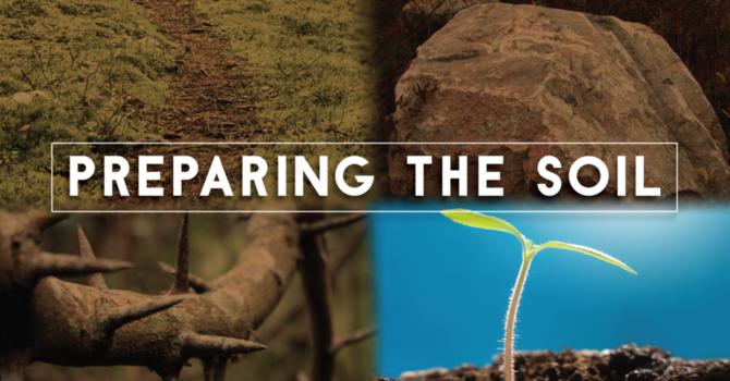 Jesus' Parable of the Soils