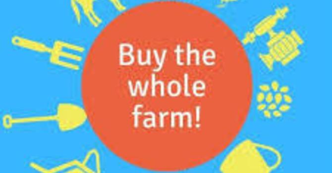 Buying the Farm image