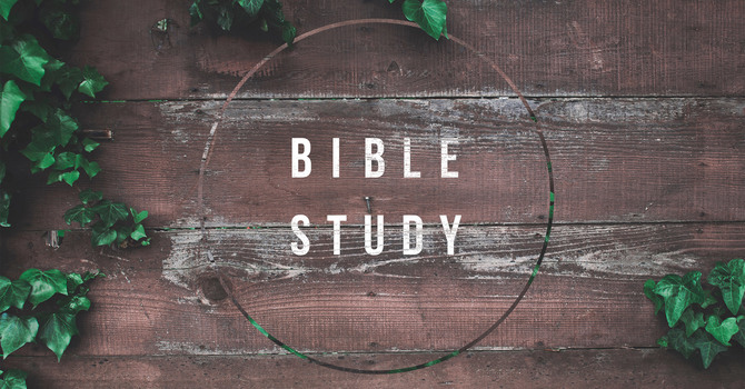 Bible Study Groups: All Ages