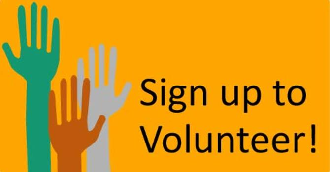 Volunteer Opportunities at our Steveston Site image