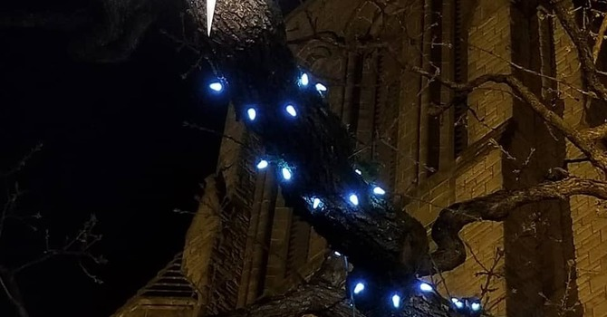 Dean's Update on Christmas at the cathedral image