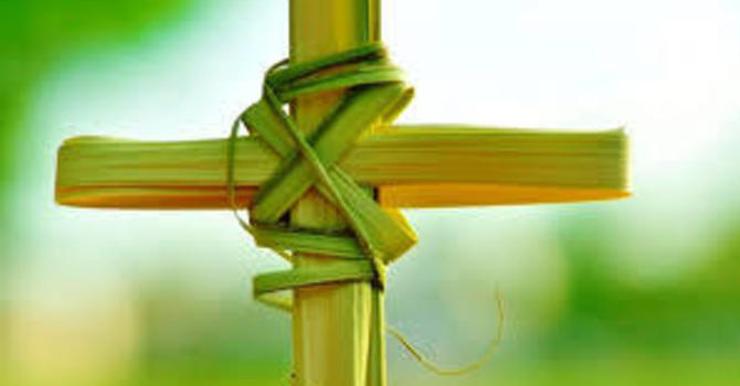 Palm Sunday: A New Chapter of the Christmas Story