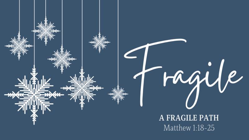A Fragile Path