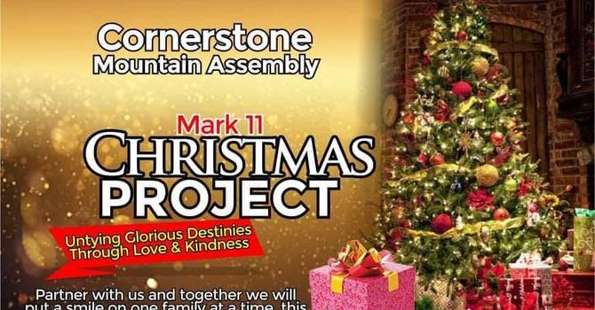 MARK 11 - CHRISTMAS PROJECT image