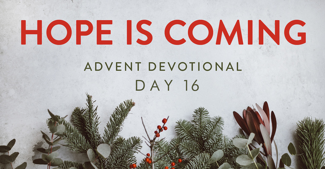 Day 16- Hope is Coming image