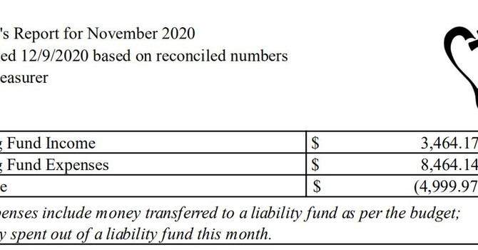 November 2020 Treasurer's Report image